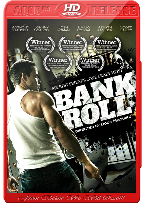 Download Bank Roll 2013 WEBRip XviD 700MB
