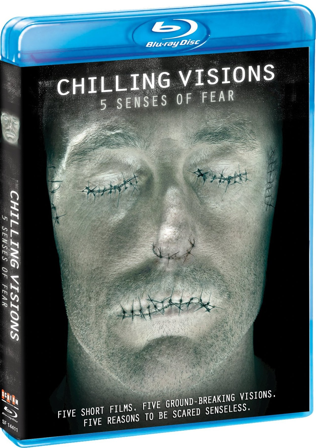 Download Chilling Visions 5 Senses Of Fear 2013 720p BluRay 600MB