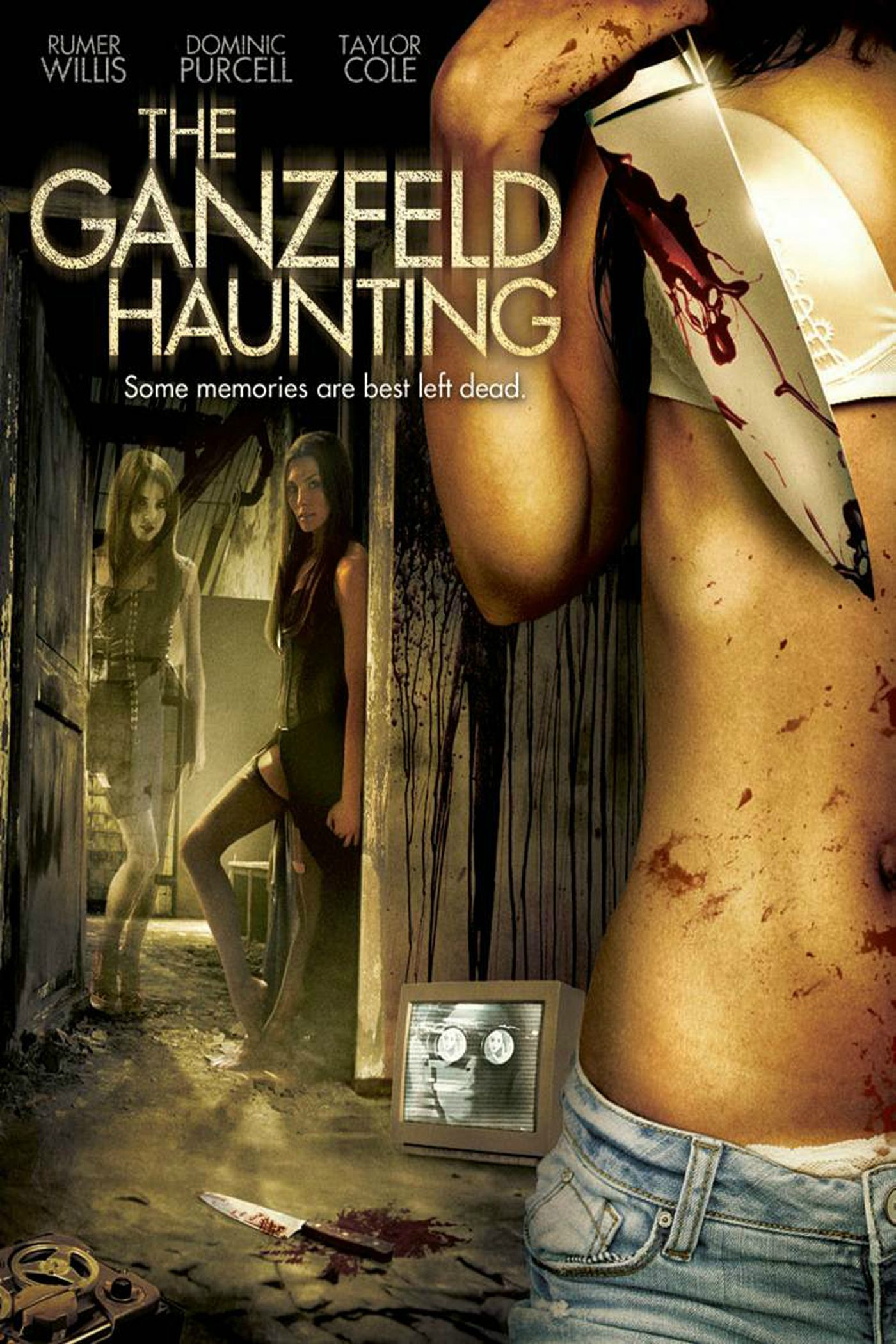 Download  THE GANZFELD HAUNTING 2014 720P WEB-DL X264 700MB